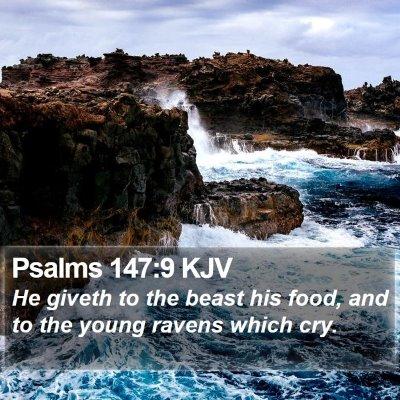 Psalms 147:9 KJV Bible Verse Image