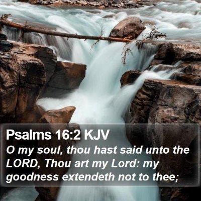 Psalms 16:2 KJV Bible Verse Image