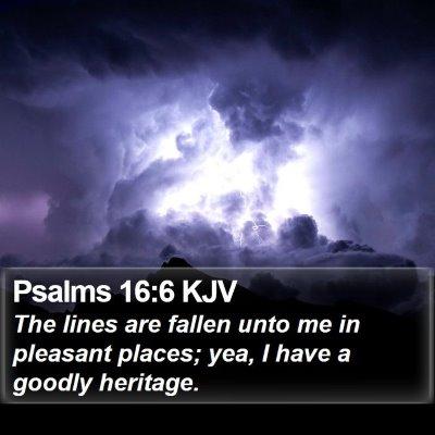 Psalms 16:6 KJV Bible Verse Image
