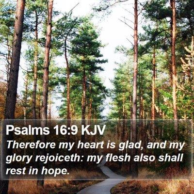 Psalms 16:9 KJV Bible Verse Image