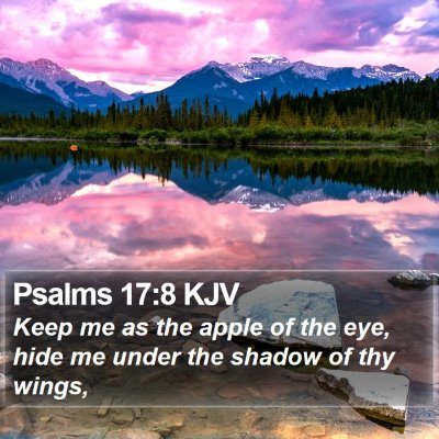 Psalms 17:8 KJV Bible Verse Image