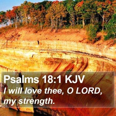 Psalms 18:1 KJV Bible Verse Image