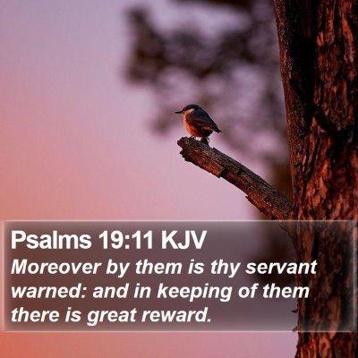 Psalms 19:11 KJV Bible Verse Image
