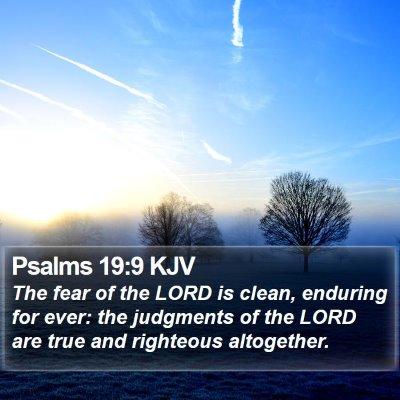 Psalms 19:9 KJV Bible Verse Image