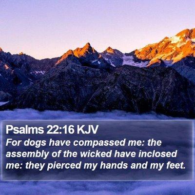 Psalms 22:16 KJV Bible Verse Image