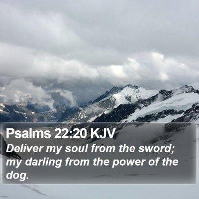 Psalms 22:20 KJV Bible Verse Image