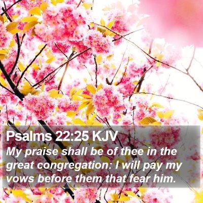 Psalms 22:25 KJV Bible Verse Image