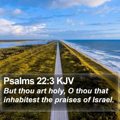 Psalms 22:3 KJV Bible Verse Image