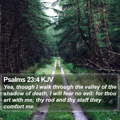 Psalms 23:4 KJV Bible Verse Image