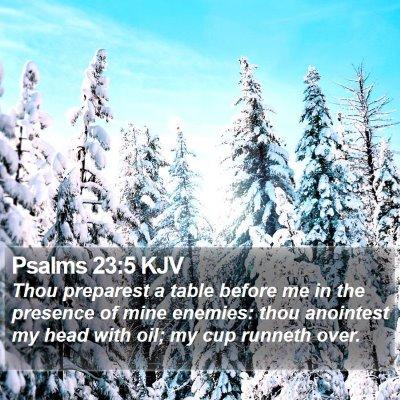 Psalms 23:5 KJV Bible Verse Image
