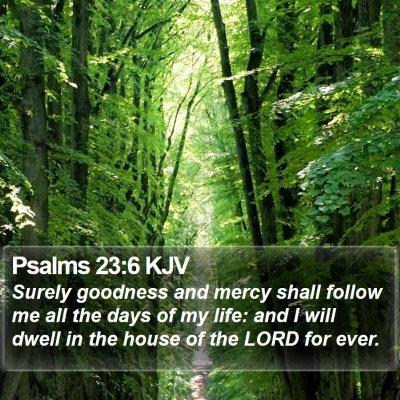Psalms 23:6 KJV Bible Verse Image