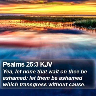 Psalms 25:3 KJV Bible Verse Image