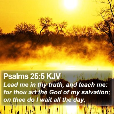 Psalms 25:5 KJV Bible Verse Image