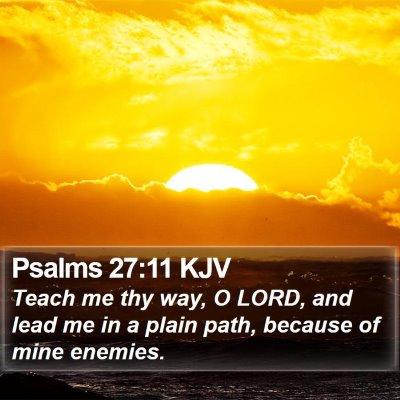 Psalms 27:11 KJV Bible Verse Image