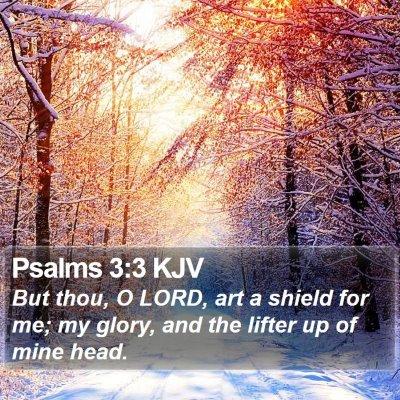 Psalms 3:3 KJV Bible Verse Image