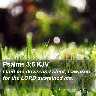Psalms 3:5 KJV Bible Verse Image