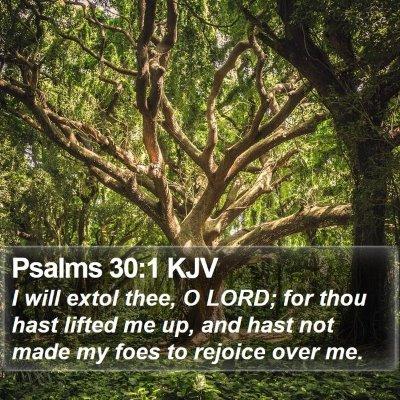 Psalms 30:1 KJV Bible Verse Image