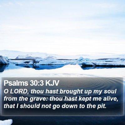 Psalms 30:3 KJV Bible Verse Image