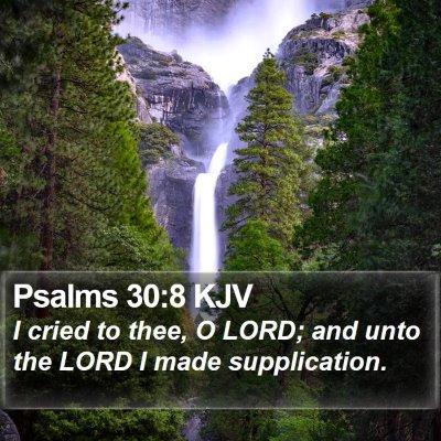 Psalms 30:8 KJV Bible Verse Image