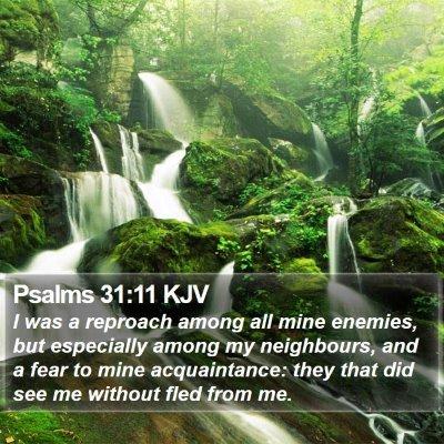 Psalms 31:11 KJV Bible Verse Image