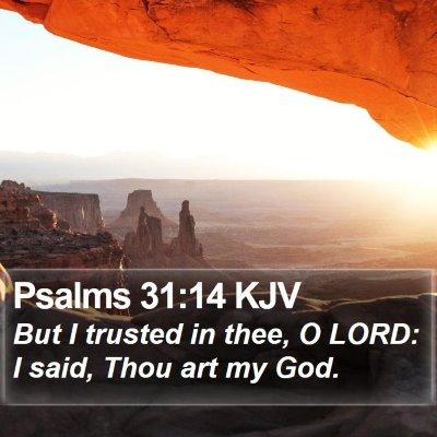 Psalms 31:14 KJV Bible Verse Image