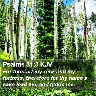 Psalms 31:3 KJV Bible Verse Image