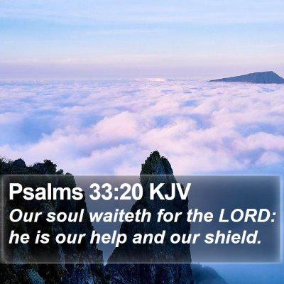 Psalms 33:20 KJV Bible Verse Image