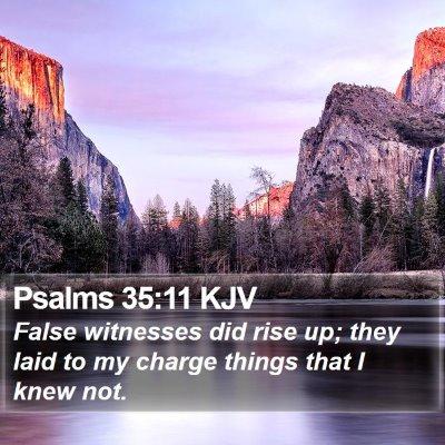 Psalms 35:11 KJV Bible Verse Image