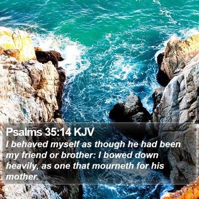 Psalms 35:14 KJV Bible Verse Image