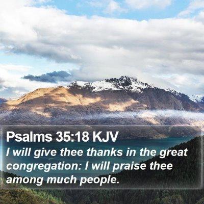 Psalms 35:18 KJV Bible Verse Image