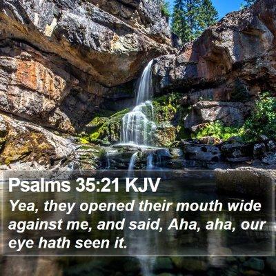 Psalms 35:21 KJV Bible Verse Image