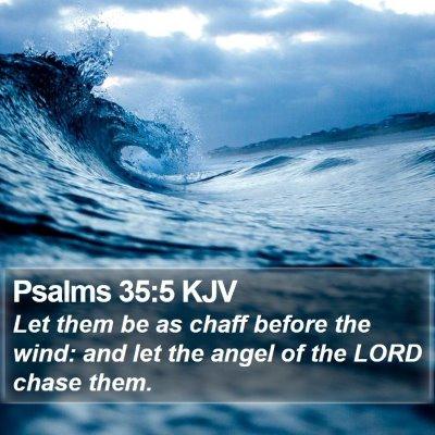 Psalms 35:5 KJV Bible Verse Image