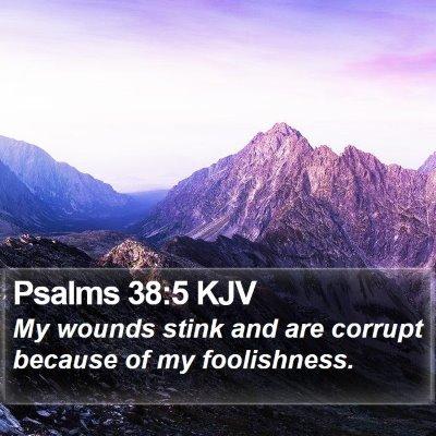 Psalms 38:5 KJV Bible Verse Image