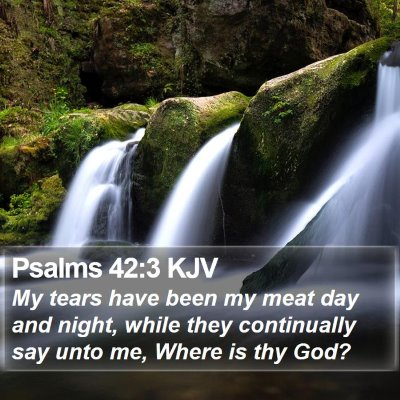 Psalms 42:3 KJV Bible Verse Image