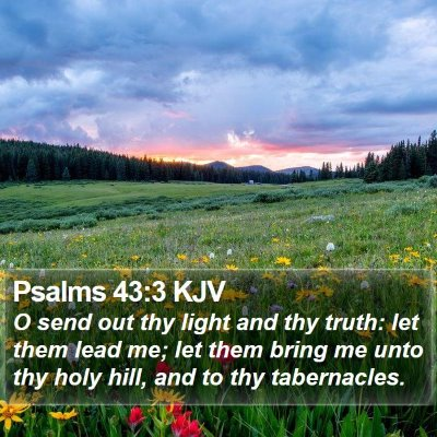 Psalms 43:3 KJV Bible Verse Image