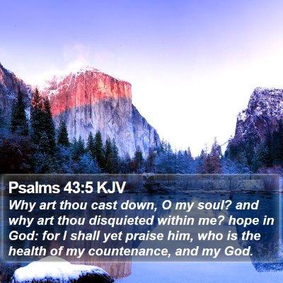 Psalms 43:5 KJV Bible Verse Image
