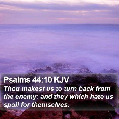 Psalms 44:10 KJV Bible Verse Image