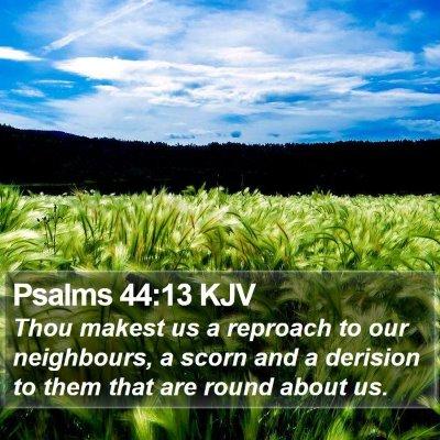 Psalms 44:13 KJV Bible Verse Image