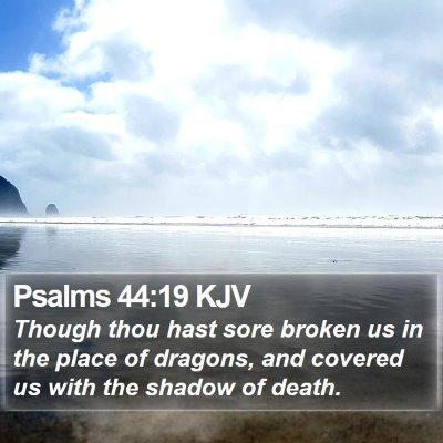 Psalms 44:19 KJV Bible Verse Image