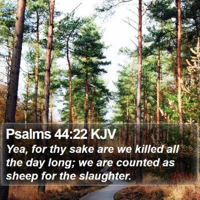 Psalms 44:22 KJV Bible Verse Image