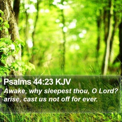 Psalms 44:23 KJV Bible Verse Image