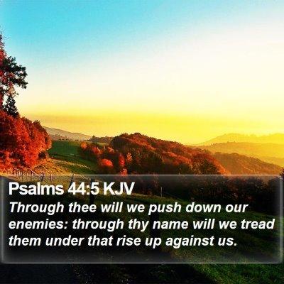 Psalms 44:5 KJV Bible Verse Image