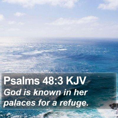 Psalms 48:3 KJV Bible Verse Image