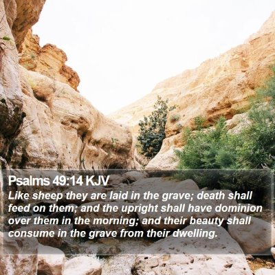 Psalms 49:14 KJV Bible Verse Image