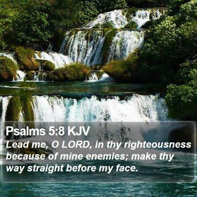 Psalms 5:8 KJV Bible Verse Image
