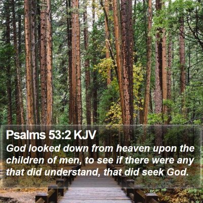 Psalms 53:2 KJV Bible Verse Image
