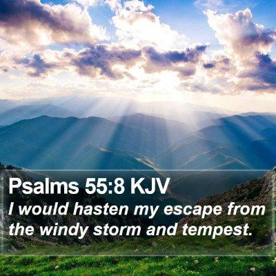 Psalms 55:8 KJV Bible Verse Image