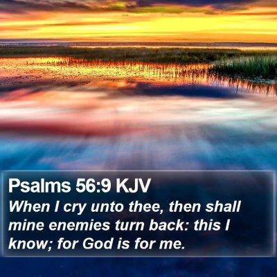 Psalms 56:9 KJV Bible Verse Image