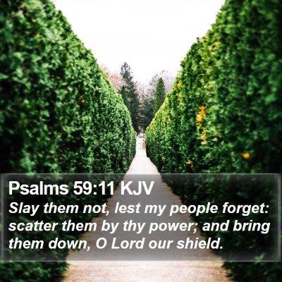Psalms 59:11 KJV Bible Verse Image