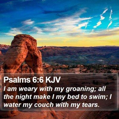Psalms 6:6 KJV Bible Verse Image